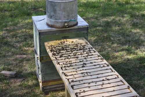 Все своими руками для пчеловода